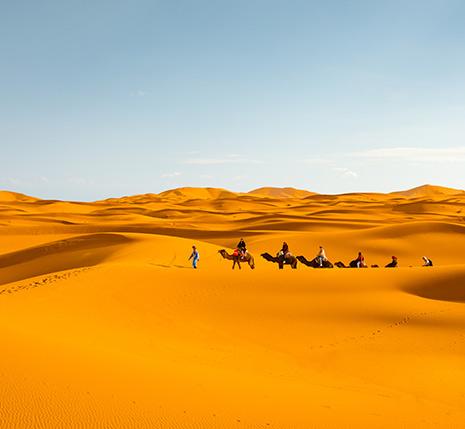 Viajes en grupo al desierto